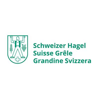 Schweizer Hagel - Streaming Solutions